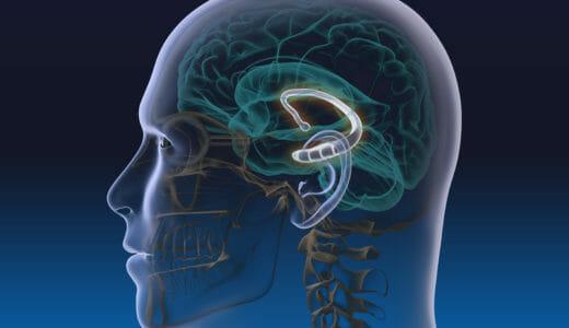 学習効果を大幅に上昇させる!?5種類の脳波と勉強との関係