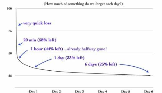あなたも誤解している?!忘却曲線の本当の意味とその活用法