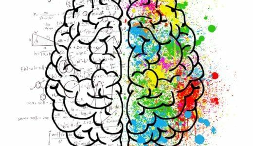 勉強や記憶にまつわる脳科学の研究結果まとめ