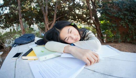勉強の合間の昼寝